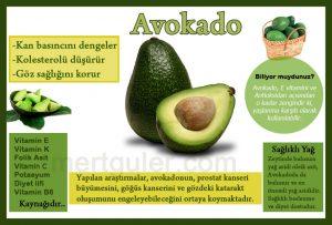 yem-avokado